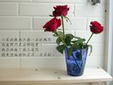 三朵玫瑰花.jpg